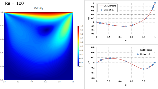 キャビティ流れ解析の結果 Re=100