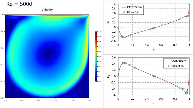 キャビティ流れ解析の結果 Re=5000