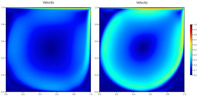 キャビティ流れ解析の差分スキームの比較